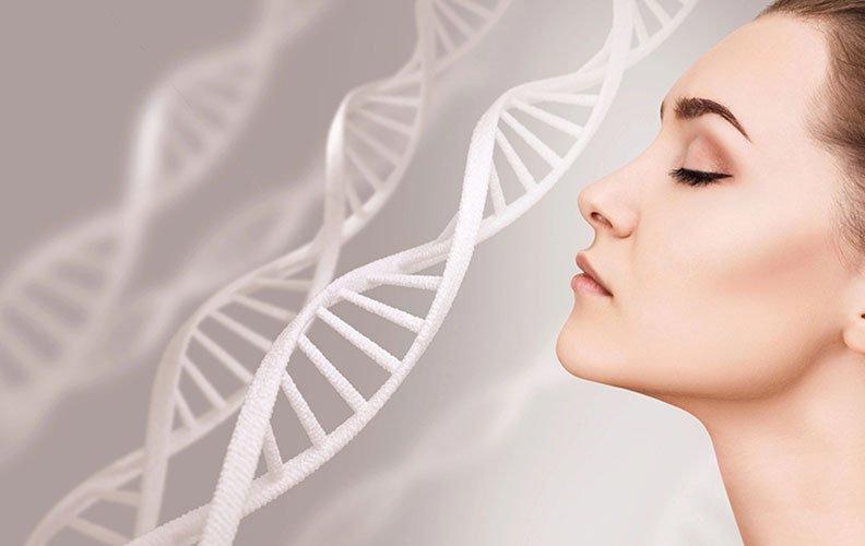 Entenda a formação da proteína Colágeno